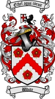 White Irish Coat of Arms