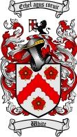 White Irish Coat of Arms