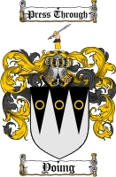 Young Scottish Coat of Arms